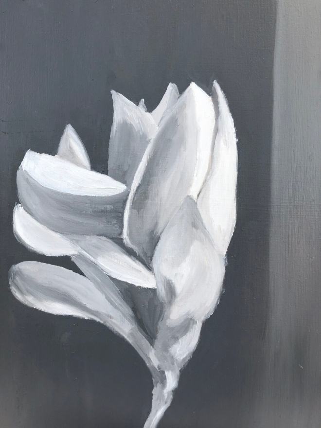 """Magnolia (oil on panel, 10 x 8"""")"""